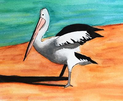 Stephen Twartz birds